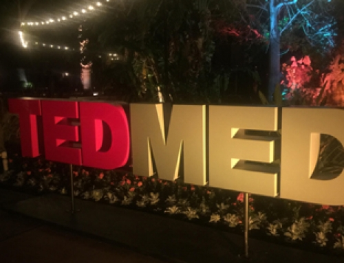 Makeup Artist & Hair Stylist for TEDMED 2015
